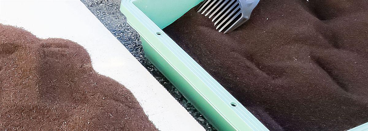 アスカカンパニーで自然乾燥しているコーヒー豆